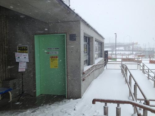 雪のためドッグランは休場となります。