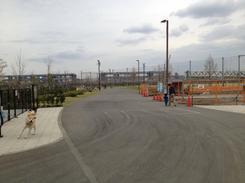 ドッグラン前のグラウンド整備工事